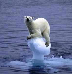 Climate-Change-and-Melting-Ice-Caps-295x300